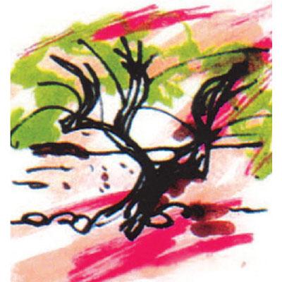 Les Vignerons de Quissac logo